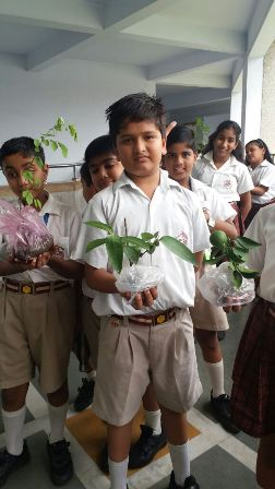 Celebration of World Environment Day